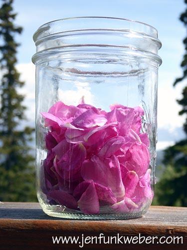 Rose petals for tea.