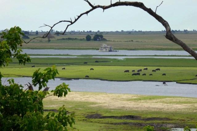 Chobe Riverfront, Chobe National Park, Botswana