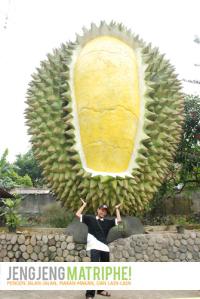 Durian Raksasa