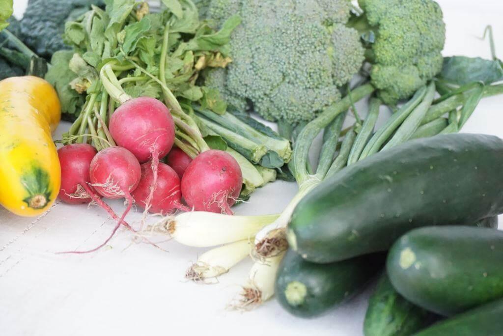 Veggies in the CSA Box