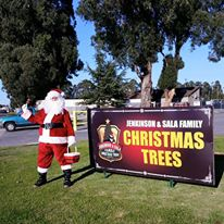 Jenkinson & Sala Family Christmas Trees, Salinas, California