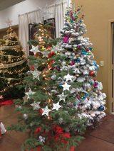 Jenkinson and Sala Family Christmas Trees