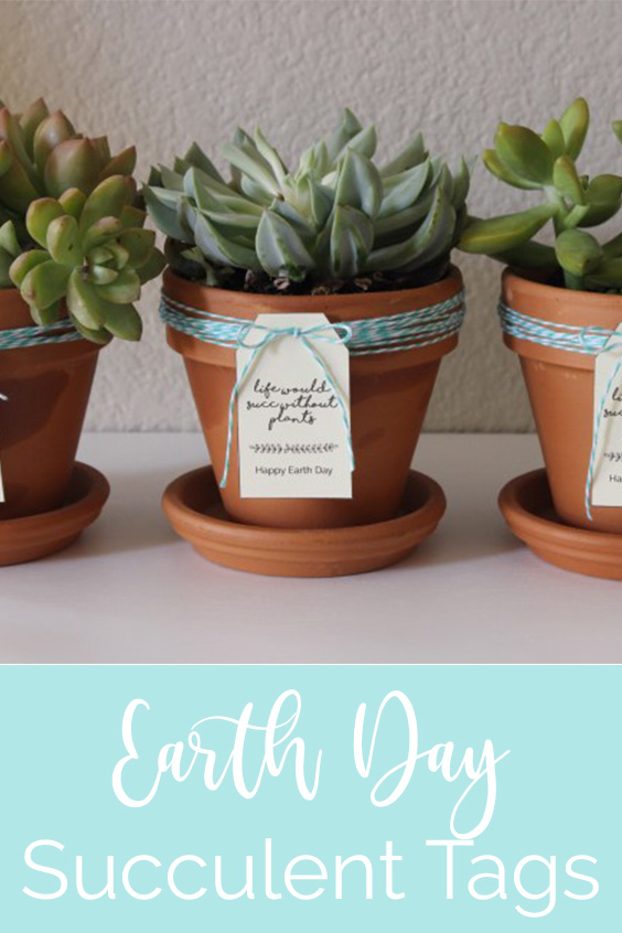 Lawrence Made Earth Day Succulent Tags