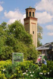 Kew Gardem10