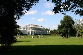 Kew Gardem13