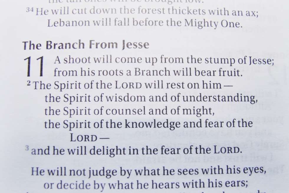 Jesse Tree Scripture Passage
