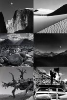 ansel adams collage