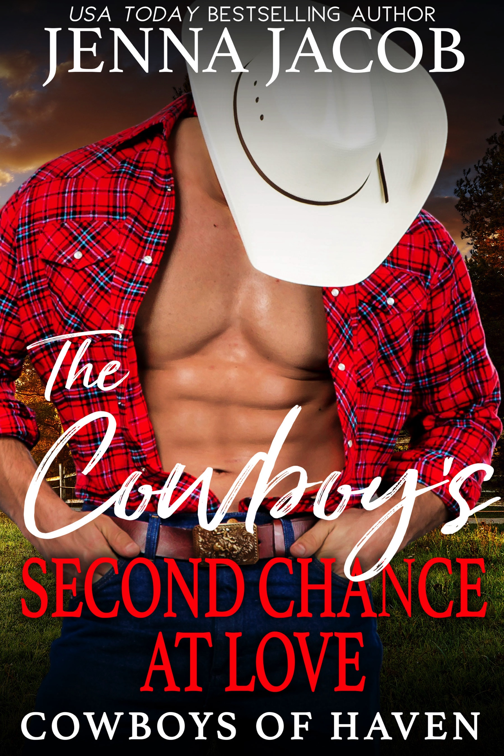 The Cowboy's Second Chance At Love