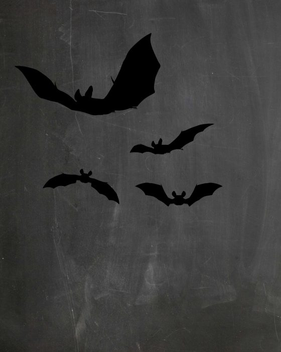 This chalkboard printable has silhouettes of spooky Halloween bats