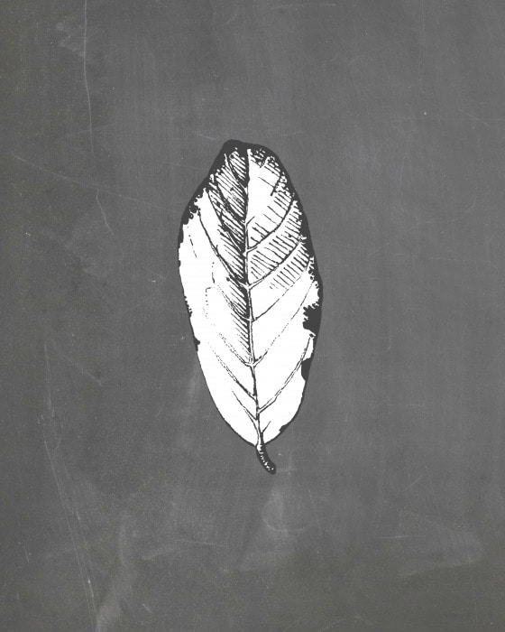 This chalkboard style printable features a black and white leaf, making it perfect for Fall and Halloween decor
