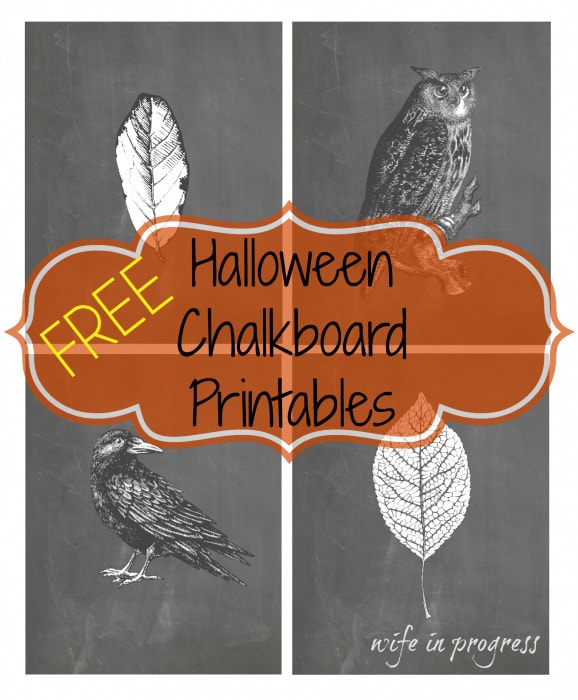 These Chalkboard style Halloween printables add the perfect touch of spooky to your Halloween decor