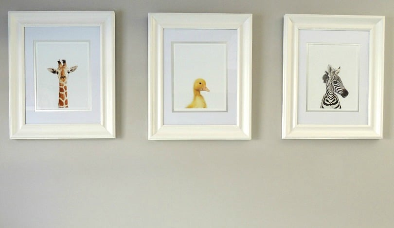 These adorable baby animal prints added a cute touch to our baby boy nursery decor