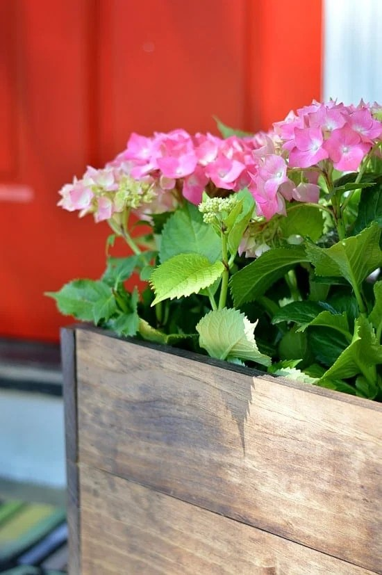a  DIY wood planter box tutorial