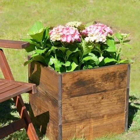 Square wooden planter box holding large pink flowers near a wooden folding chair on the lawn