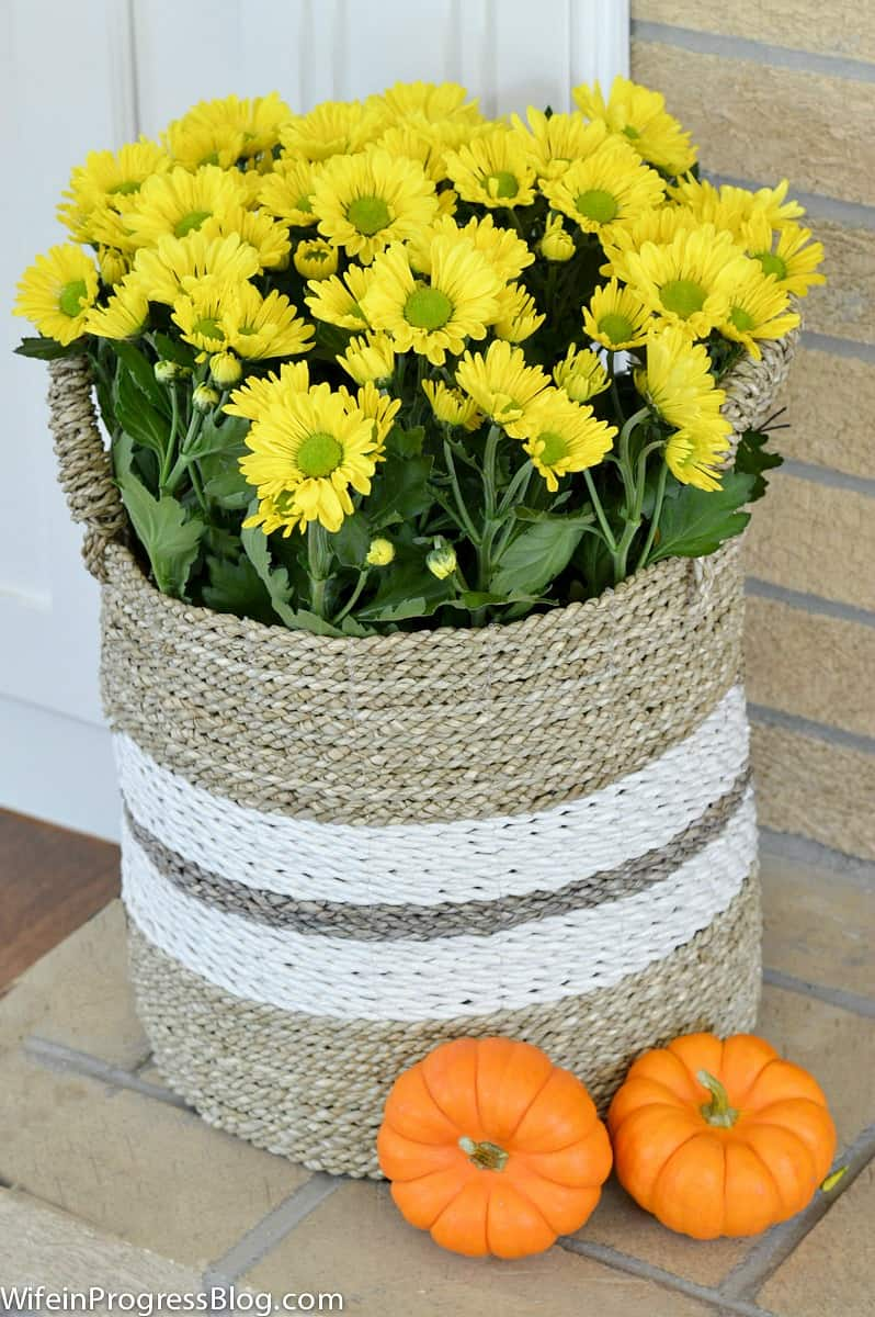 Basket of yellow mums on the hearth