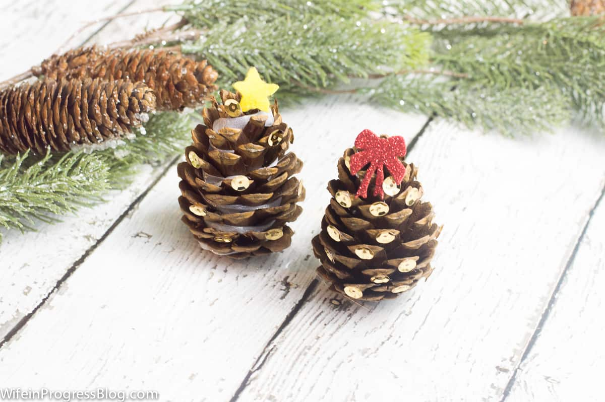 Wouldn't the kids have so much fun decorating these mini Christmas trees!?