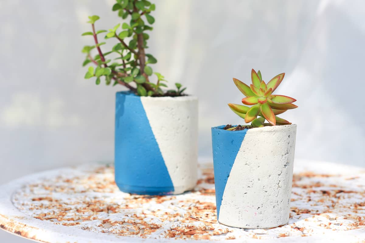 2 cement planters painted blue and white with succulents inside