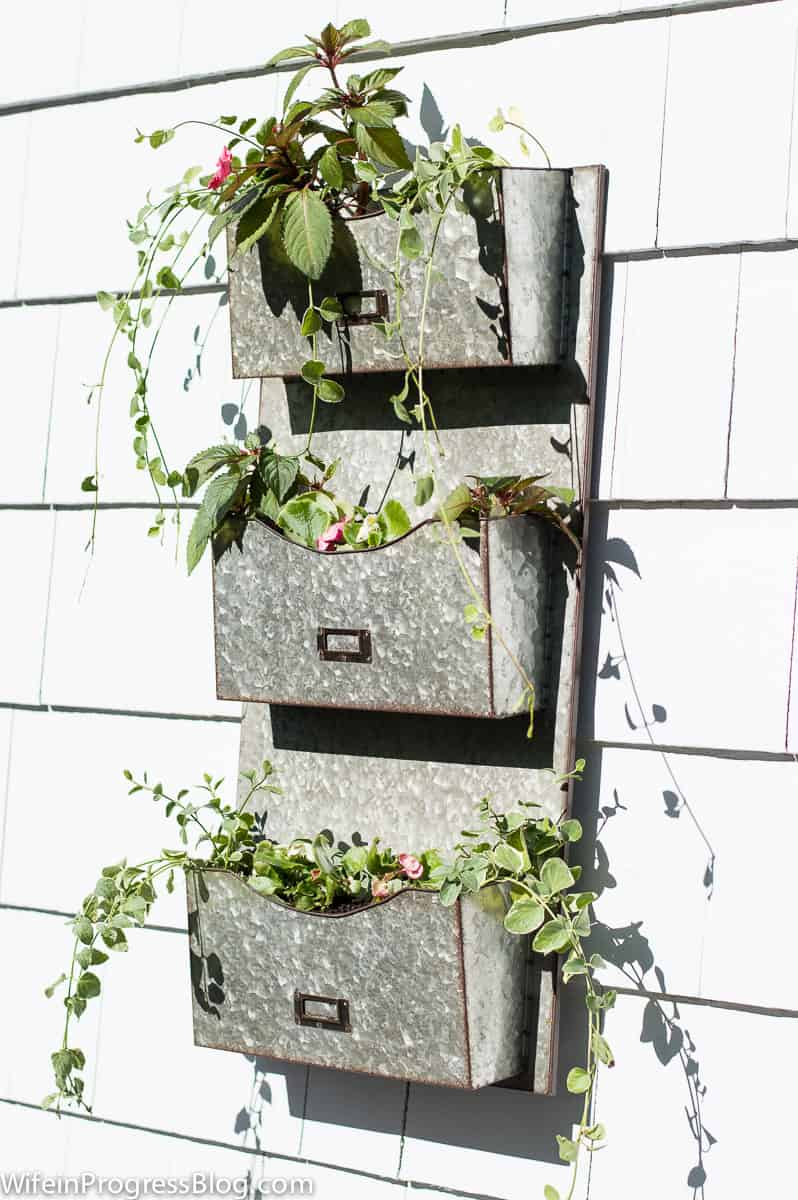 galvanized metal mail sorter with plants hanging outside a house