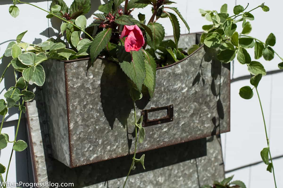 create a unique planter out of a mail holder!