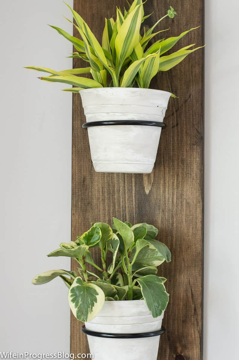 Easy DIY Wooden Wall Planter. Simple farmhouse style project that is perfect for spring and will look cute in any room of your home.