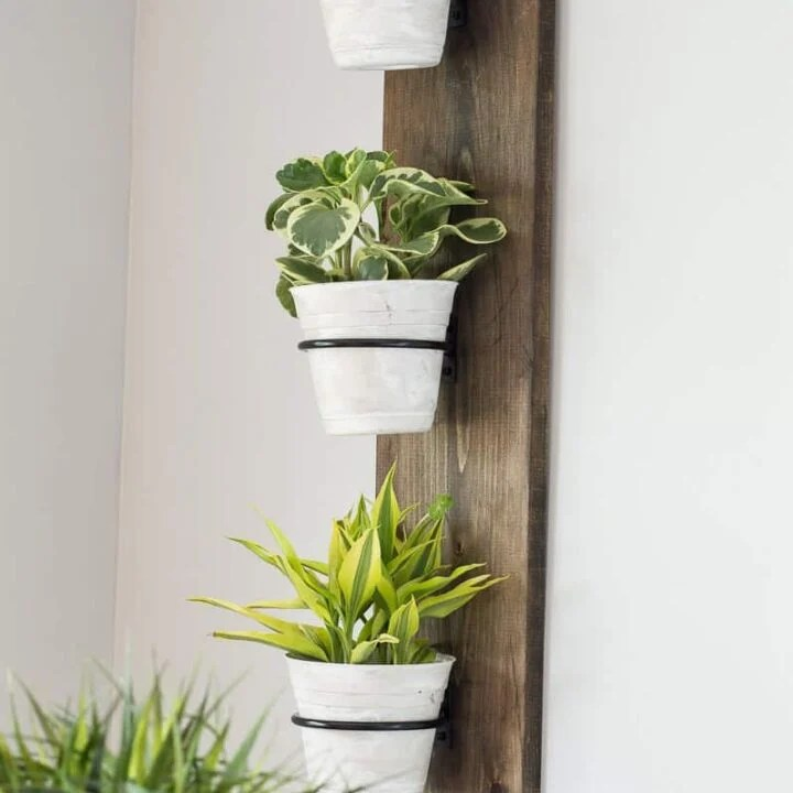 Vertical wooden plank, stained brown, holding 3 white plant pots with greenery