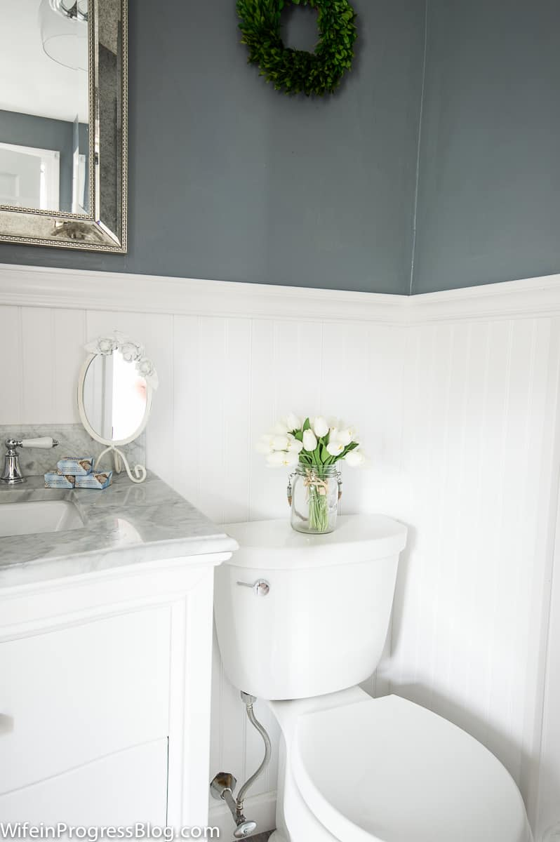 When we updated our master bathroom, we sprung for a brand new white porcelain toilet