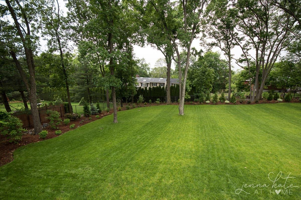 large backyard landscaping inspiration