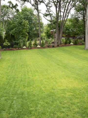 large backyard landscaping ideas