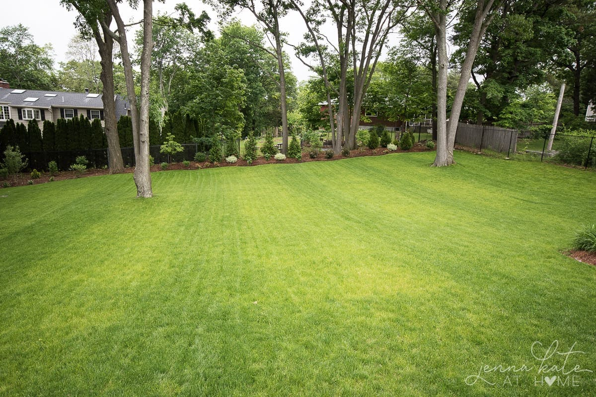 Our Yard This Spring Large Backyard Landscaping Inspiration
