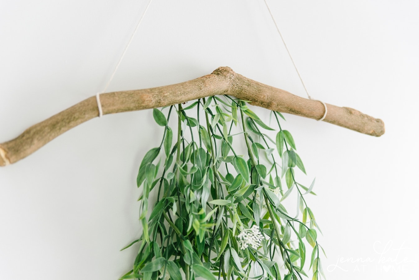Branch with green foliage and twine, hanging on wall