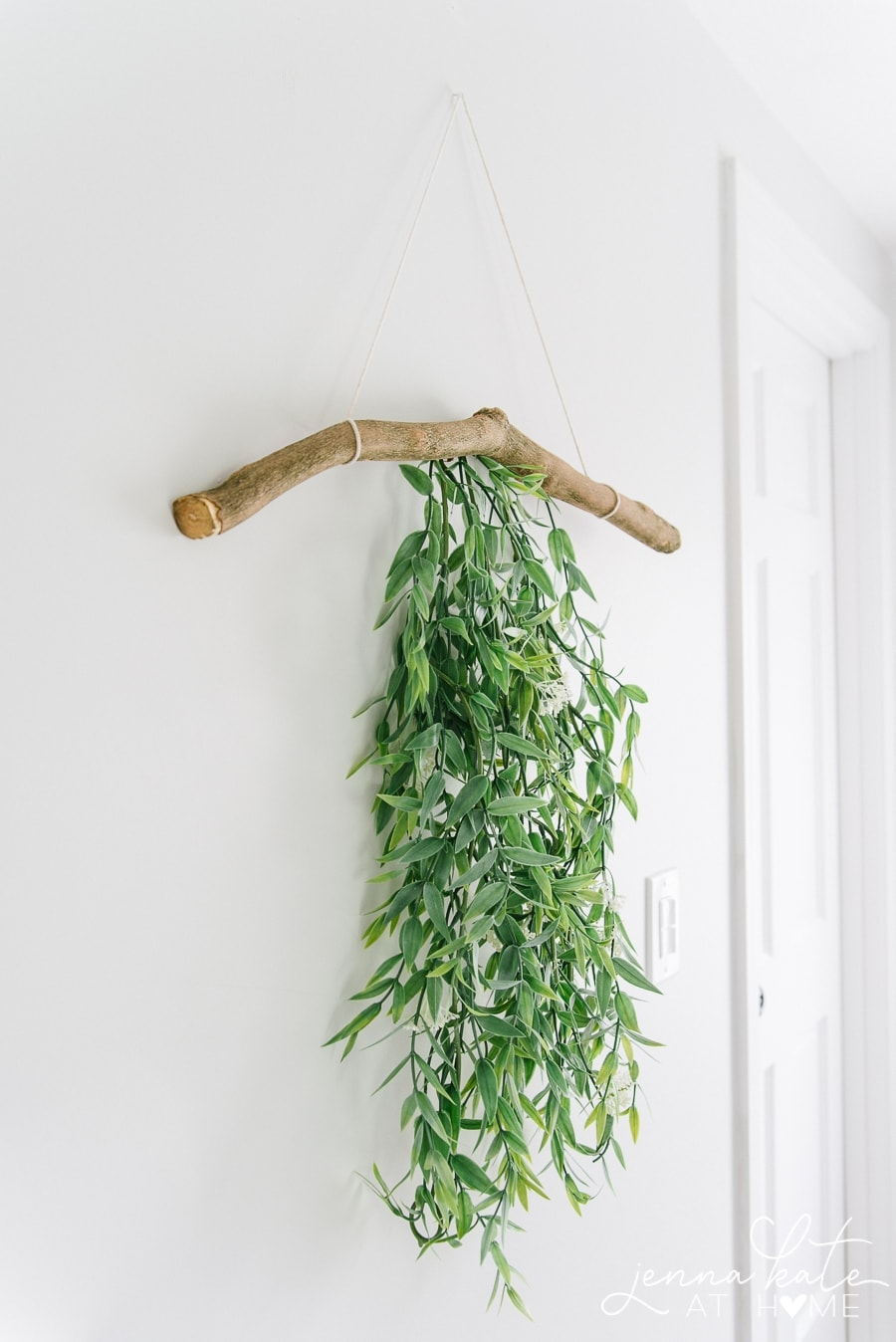 A side view of branch, hanging on wall, with green foliage cascading down