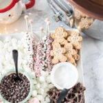 Christmas charcuterie board ideas for holiday parties - Both savory and dessert options!
