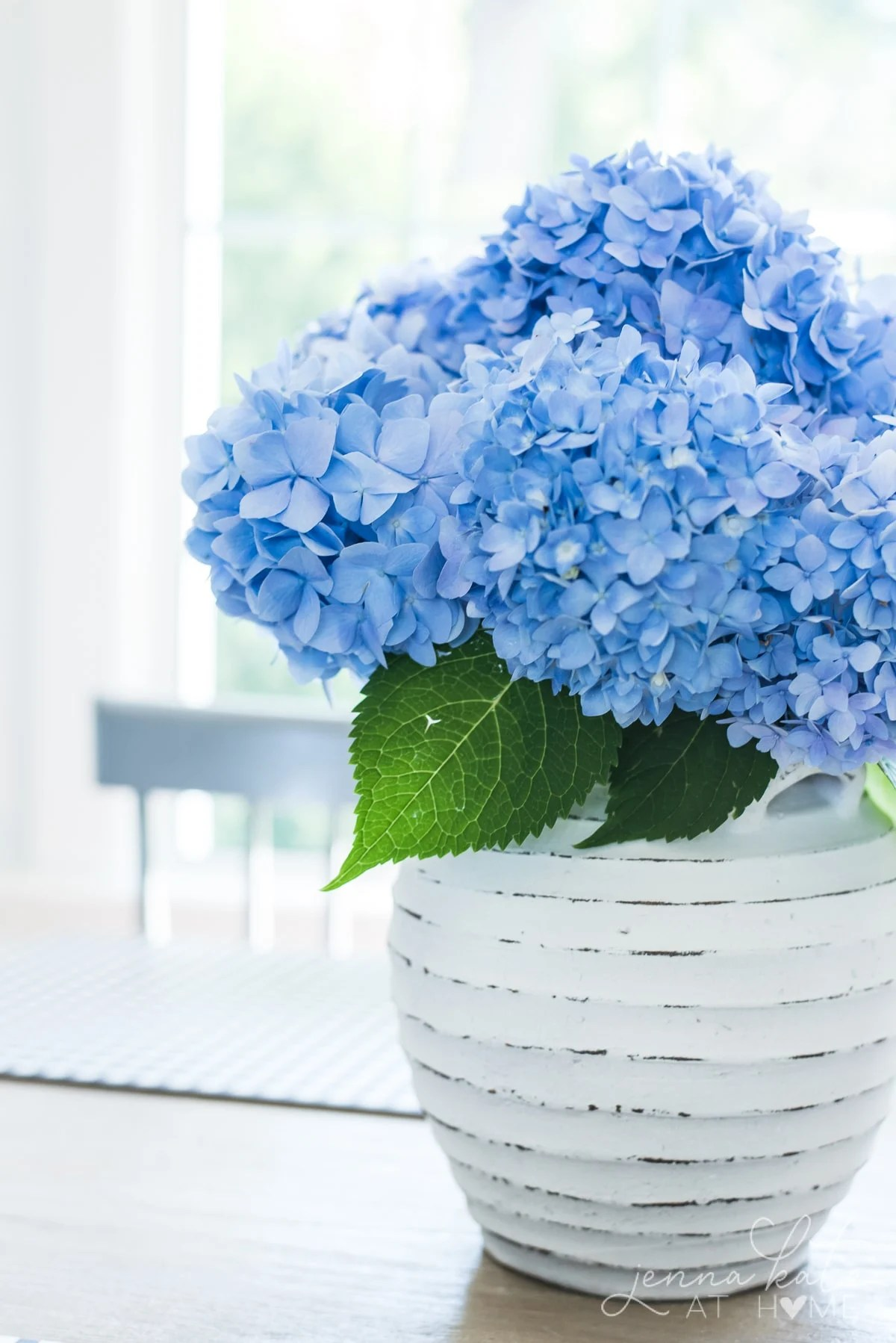 Vase filled with hydrangeas that last for up to 3 weeks