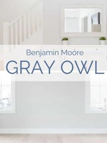 benjamin moore gray owl review