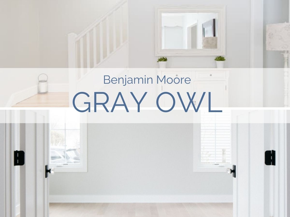 paint color review: Benjamin Moore Gray Owl