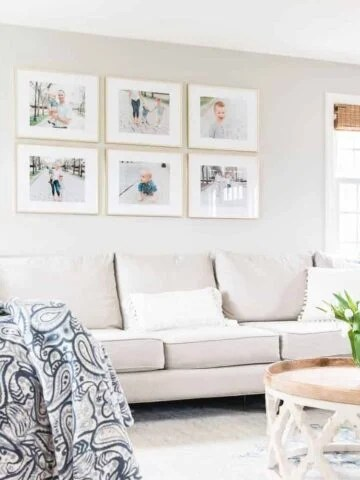 Living room that shows example of Jenna's style