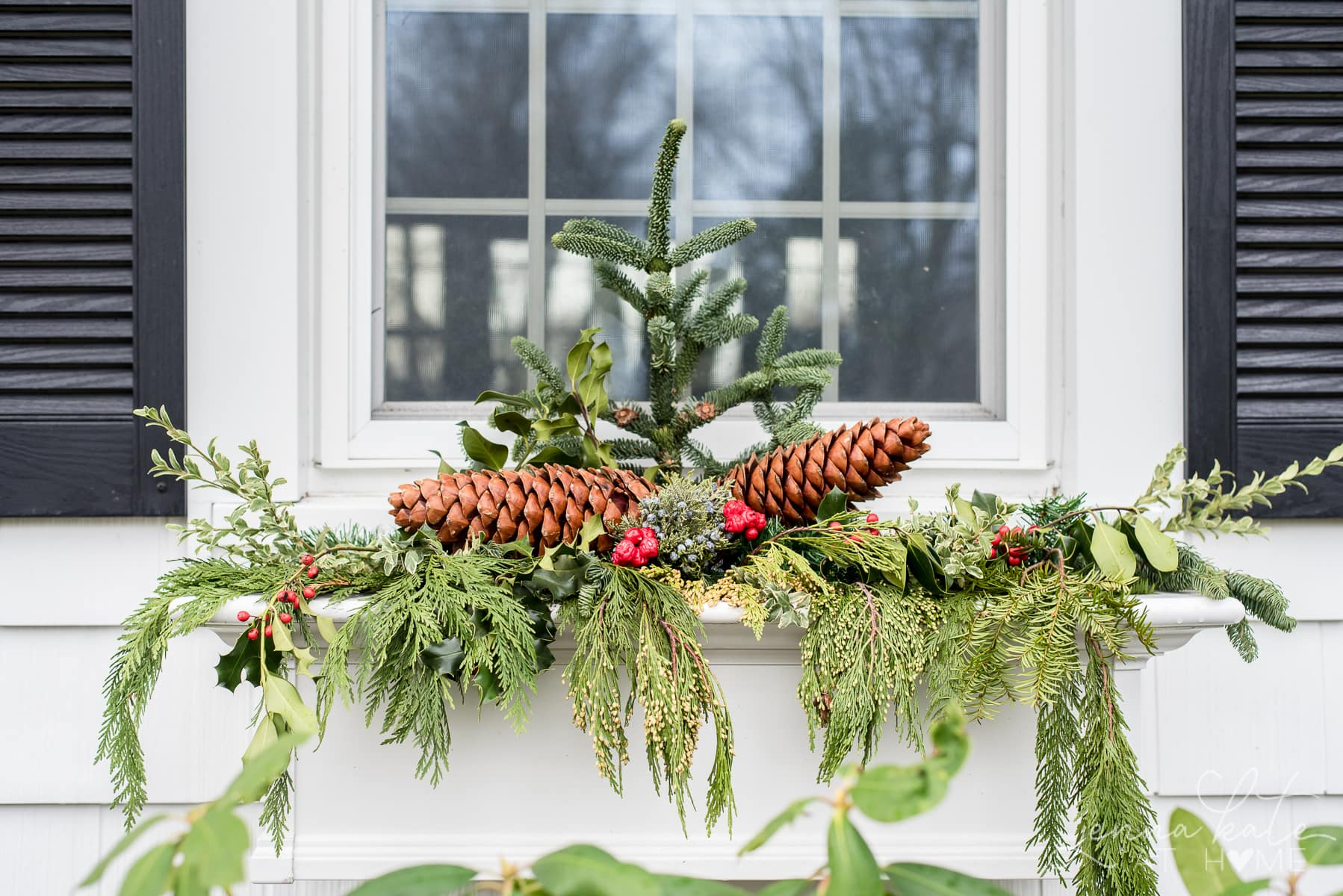 Window box filled with Christmas greenery, pinecones and berries