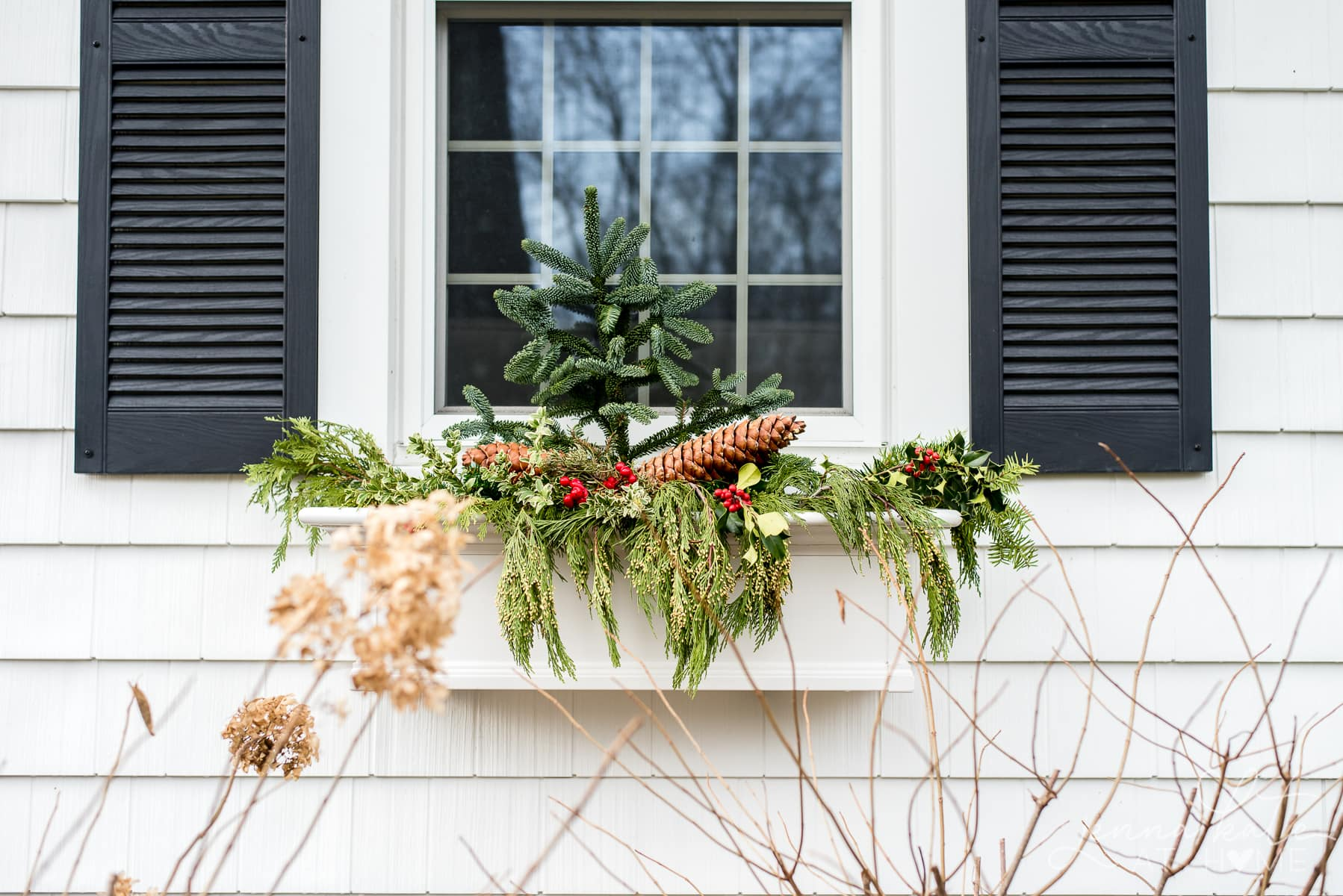 Christmas window box on a white colonial house with black shutters
