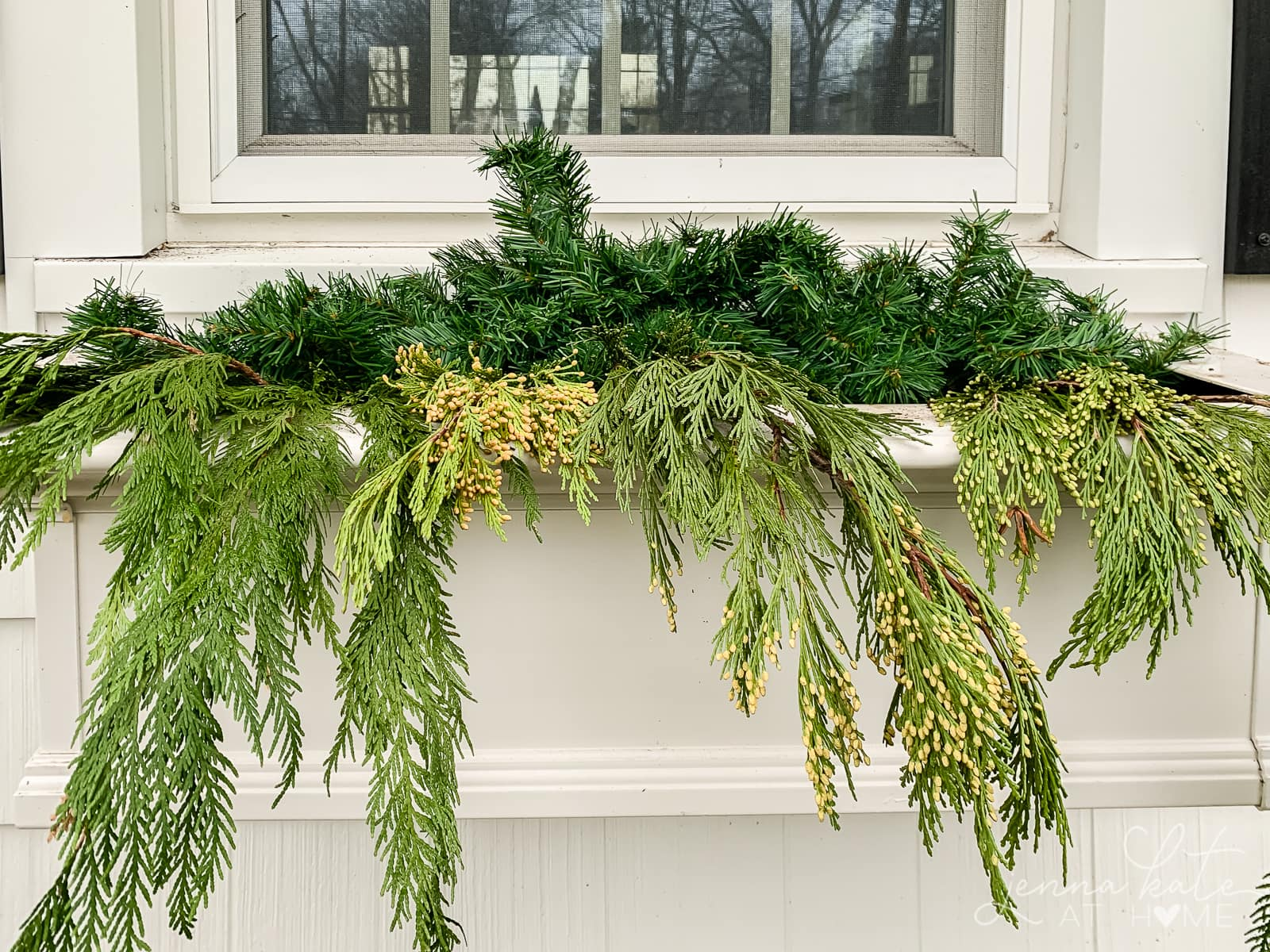 Cedar branches draping over the front of the window box