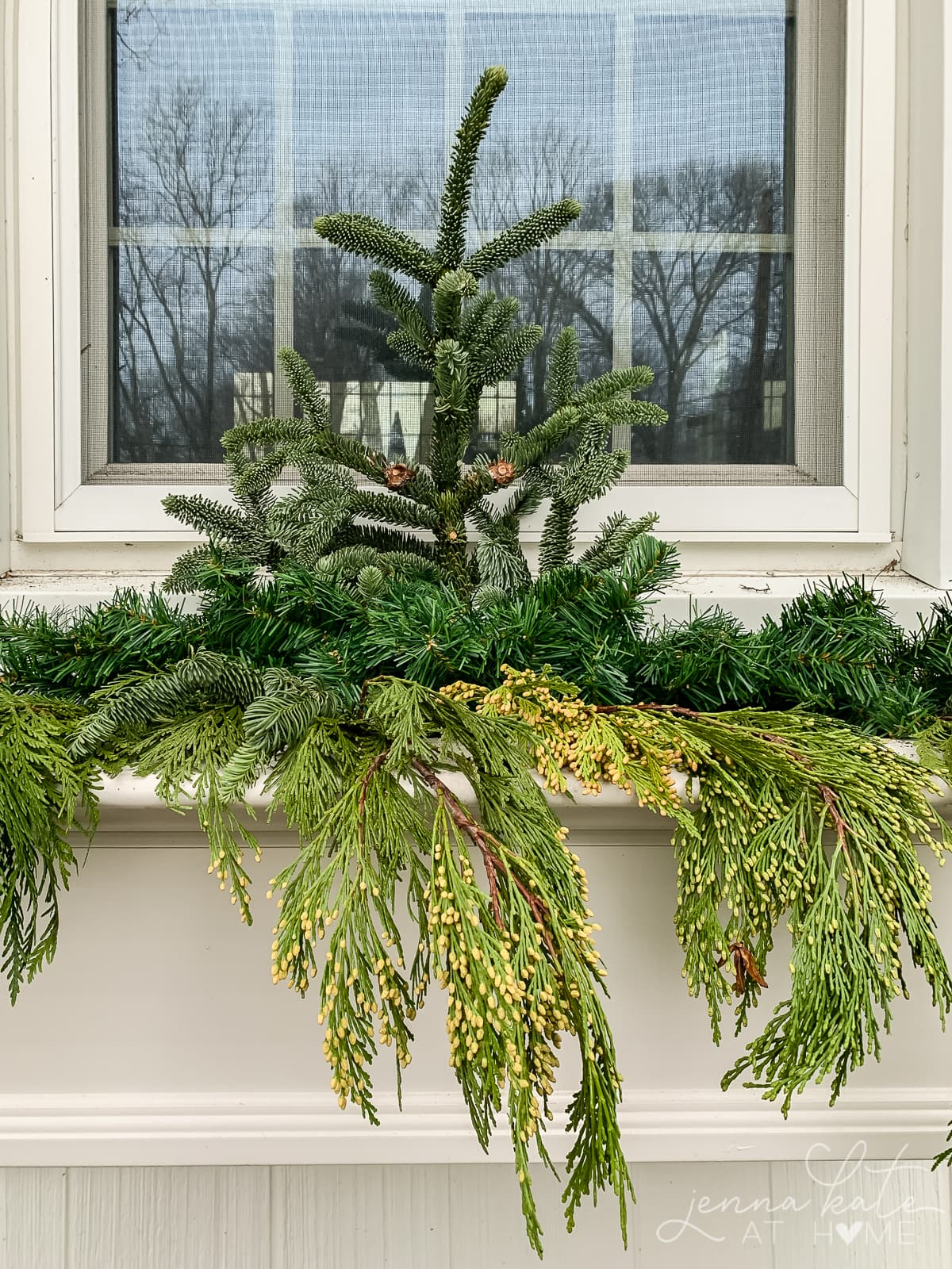 A large piece of fir at the back of the window box with cedar draping over the front