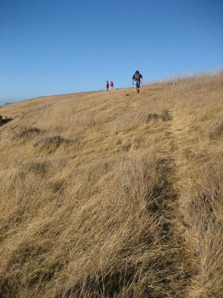 Hiking on Santa Cruz, one of California's Channel Islands