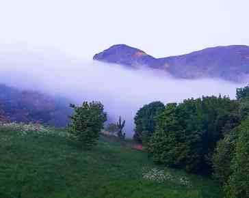 Ooo mystical fog