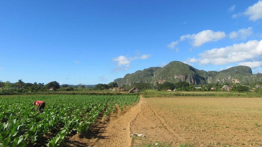 Cayo Levia mountain