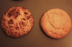 snickersprodoodle vs snickerdoodle