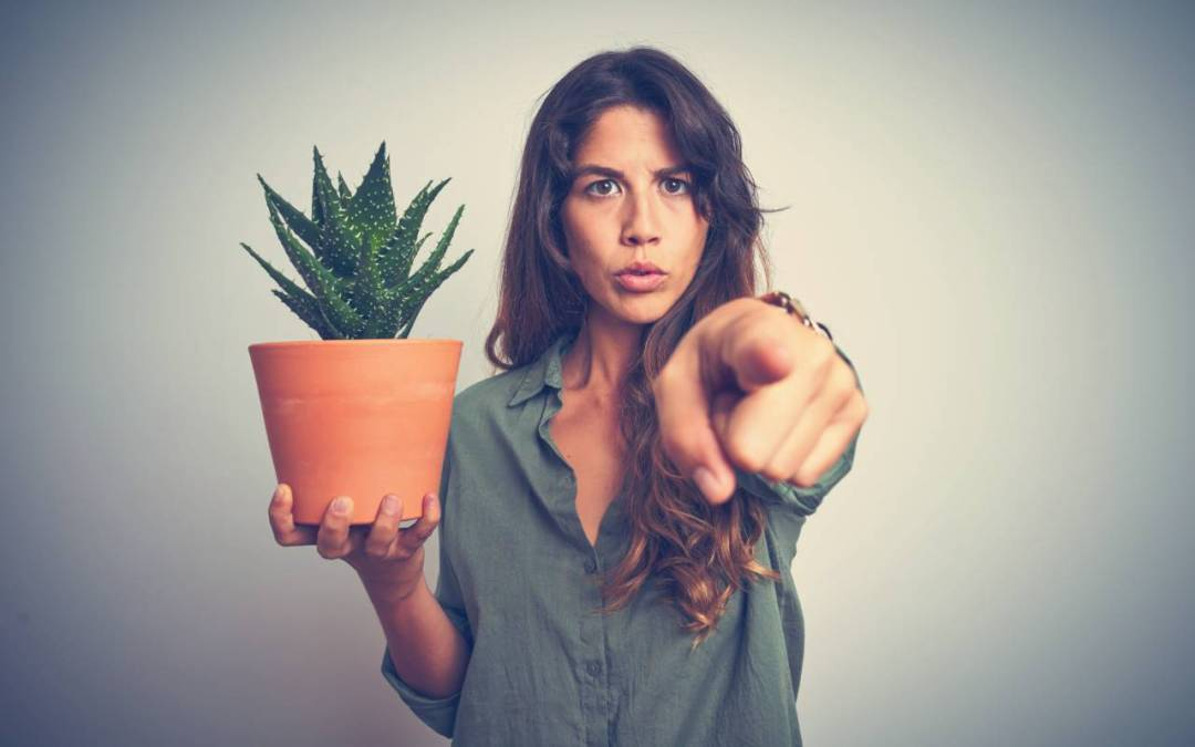 woman- holding-plant-and-pointing