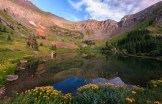 Gold King Basin is adorned in all of its splendor at the peak of summer wildflowers.