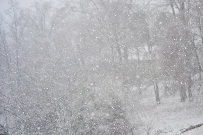 Quick blizzard