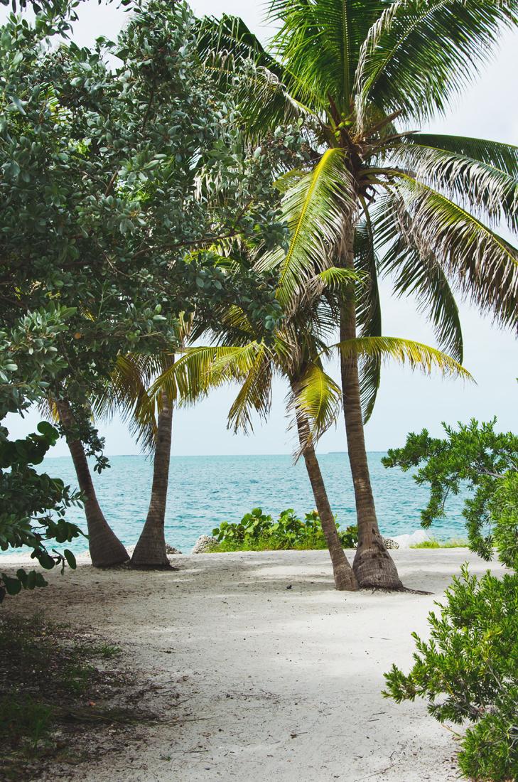 ft-zachary-taylor-beach