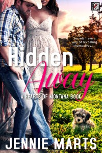 HIDDEN_AWAY COVER_500