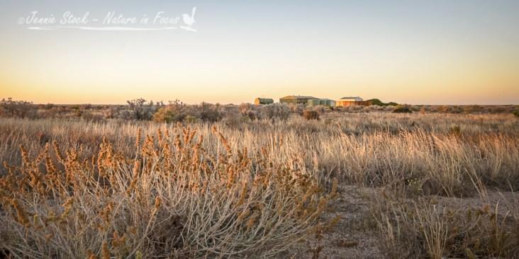 Sunset on the Nullarbor